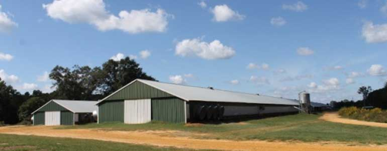 Waldron, AR Poultry Insurance Agents | The Owens Agency